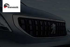 Used 2019 Peugeot 208 S/S GT LINE Red at Sherwoods